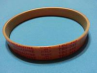 Ремень полуклиновой TB2-345 (8ручейков, ширина 16 мм) для слайсера Sirman MIRRA 220/250/275