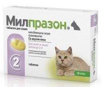 Милпразон - новый антигельминтный препарат с широким спектром действия для котов и котят весом от 0.5кг-2кг