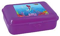 Контейнер для еды, 138x104x54мм, фиолетовый