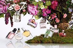 Как правильно подобрать весенний аромат?