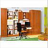 """Набор мебели для подростка """"Юниор Дизайн"""""""