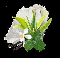 Чай Сенча м'ятна GEMINI 50 пакетиків по 1,5 г