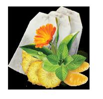 Чай Мохіто в пакетиках GEMINI 50 пак