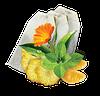 Чай Мохито в пакетиках GEMINI 50 пак