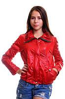 Куртка осень женская