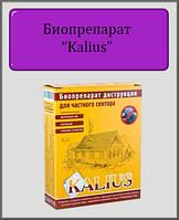 Биопрепарат Kalius 100 гр (для выгребных ям)