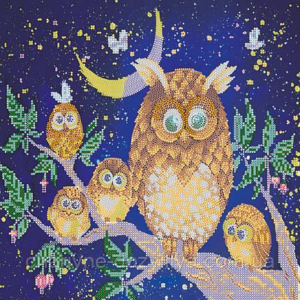 """Схема для вышивки бисером на художественном холсте """"Ночные птицы"""", фото 2"""