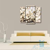 Модульная картина Ветка белые цветов из 3 модулей, фото 1