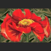 Фотообои, Мак, 4 листов, размер 140х97 см