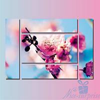 Модульная картина Цветок сакуры из 5 фрагментов