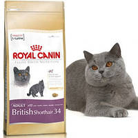 Royal Canin British Shorthair 34 для взрослых кошек породы Британская короткошерстная - 10 кг