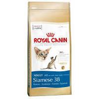Royal Canin Siamese 38 для взрослых кошек сиамской породы - 10 кг