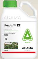 Калиф 480 КЕ (5л) - грунтовый гербицид на сою, рапс