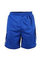 Футбольные вратарские шорты Liga Sport (Синие)