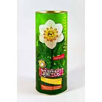 Набор для творчества Бисерный цветок Danko Toys БЦ-01