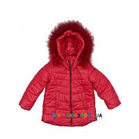 Куртка для девочки р-р 110-128 Goldy 26бн-ЗД-1515