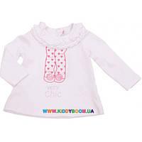 Реглан для девочки р-р 68-86 Silver Sun BK 31468