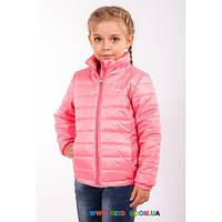 Куртка для девочки р-р 110-128 Goldy 19-ВД-16