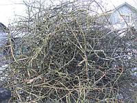 Вырубка деревьев 0675903590 на дачных участках