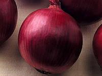 Семена лука красного R 4593 F1 (250 000 сем) Семинис