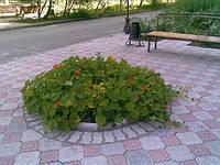 """Тротуарная плитка вибролитая """"Корона"""" серо-красная / серо-черная (2,5 см)"""