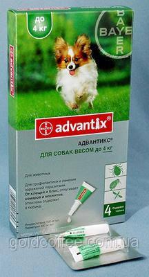ADVANTIX (Адвантікс) від бліх та кліщів для собак до 4 кг піпетка