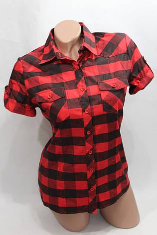 Женская молодежная рубашка в клетку короткий рукав оптом в Хмельницком, фото 2