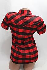 Женская молодежная рубашка в клетку короткий рукав оптом в Хмельницком, фото 3
