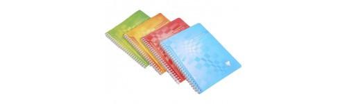 Дневники, тетради, блокноты