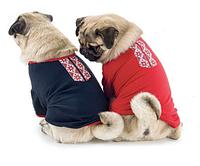 Вышиванка - футболка для собак, размеры XXS, XS, XS2,  S, M
