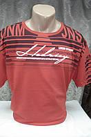Футболка мужская Hedrisy  короткий рукав (3XL), фото 1