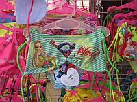 Купальник детский Winx Club шторка