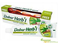 Зубная паста Дабур Ним 150 грм., Dabur Herb'l Neem toothpaste + зубная щётка!