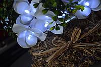 Гирлянда из 20 больших и пушистых орхидей на батарейках, фото 1