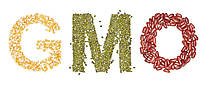 АНАЛІЗ с/г  продукції  на ГМО