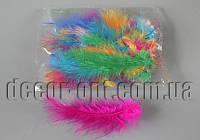 Перья цветные 13-15 см 50 шт