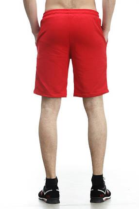 Шорты Ястреб красные, трикотаж, фото 2