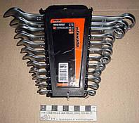 Набор ключей 12шт (6-22мм) рожково-накидных 51-710