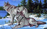 Схема для вышивания бисером Волки КМР 2010