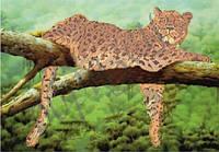 Схема для вышивания бисером Леопард КМР 2012
