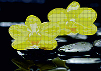 Схема для вышивания бисером Желтые орхидеи на камнях КМР 2122