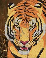 Схема для вышивания бисером Тигр КМР 2014