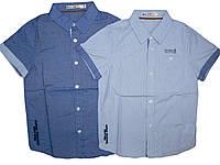 Рубашка  с коротким рукавом  для мальчиков,Glostory, размеры 98,110, арт. BCS 1175