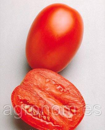 Семена томата Гваделетте F1 1000 семян Seminis