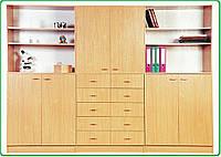 Мебельная стенка для кабинетов, учебных классов Днепр-1