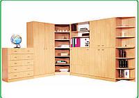 """Мебельная стенка для кабинетов, учебных классов угловой """" Проминь-1"""""""