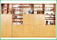 Мебельная стенка для кабинетов, учебных классов (история, география и биология