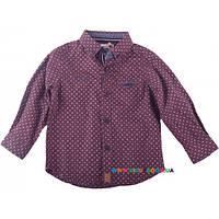 Рубашка для мальчика р-р 68-86 SILVER SUN GC 63566