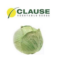 Капуста белокочанная Центурион Clause 10 тыс. семян