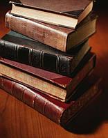Дипломная по украинской литературе